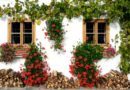 Flower Festivals Spain - city decorated with flowers during the festival